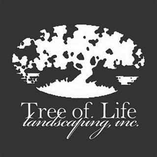 tree of life gulf shores al